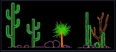 cactus_desert_vegetation_vegetazione_wusten_vegetacion_desertica_columnar